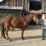 gryazev-2011 (33)