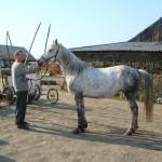gryazev-2011 (4)