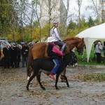 horse-ural (11)