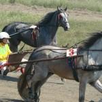 in-artyomovsk-jule-2010 (16)