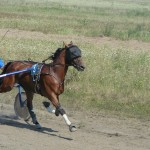 in-artyomovsk-jule-2010 (75)