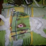 Белая кошка на операции