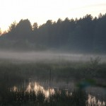 landskap-2011-03-23 (24)_resize