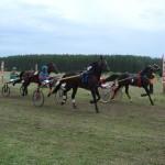 kostino-2011-2 (10)