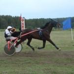 kostino-2011-2 (13)