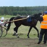 kostino-2011-2 (21)