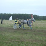 kostino-2011-2 (37)