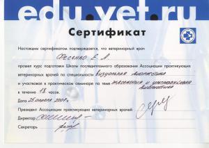 сертификат визуальная диагностика 026