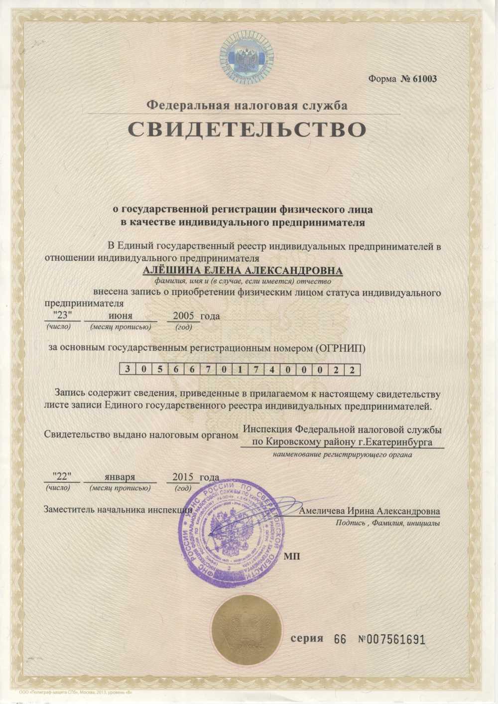 свидетельство регистрации как ИП
