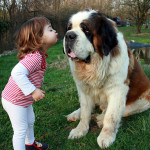 Friendship between children and animals (15)