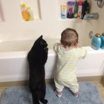 Friendship between children and animals (3)