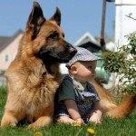 Friendship between children and animals (8)