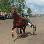 bega-v-artemovskom (19)