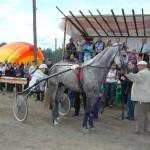 bega-v-artemovskom (25)