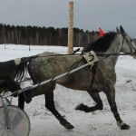 oktyabrskoe-1 (24)